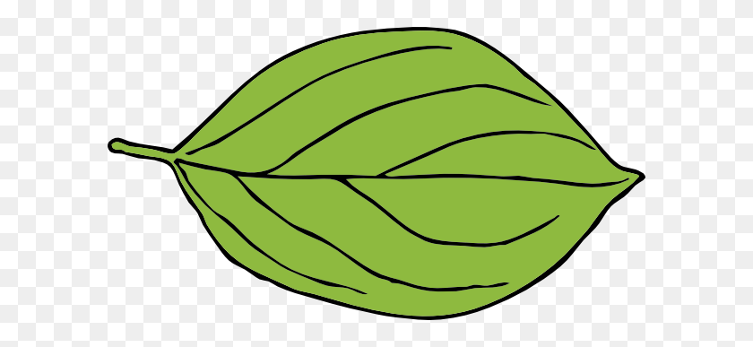 Clipart Leaf Shapes - Lily Pad Clipart