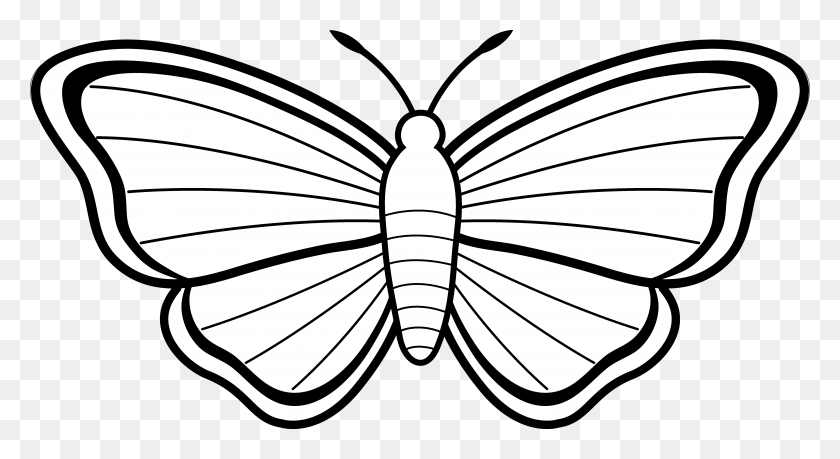 Clipart Outline Of Butterfly Free Download Clip Art - Pencil Outline Clipart