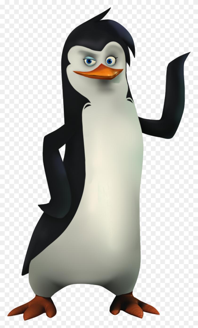 865x1477 Clipart Penguins, Madagascar - Madagascar Clipart