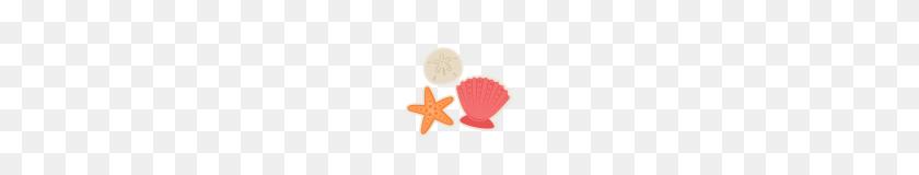 Clipart Seashell Clipart Free Clip Art Seashell Clipart Seashell - Seashell Border Clipart