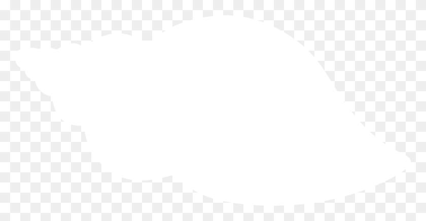 Clipart Shapes Seashell, Clipart Shapes Seashell Transparent Free - Seashell Clipart Free