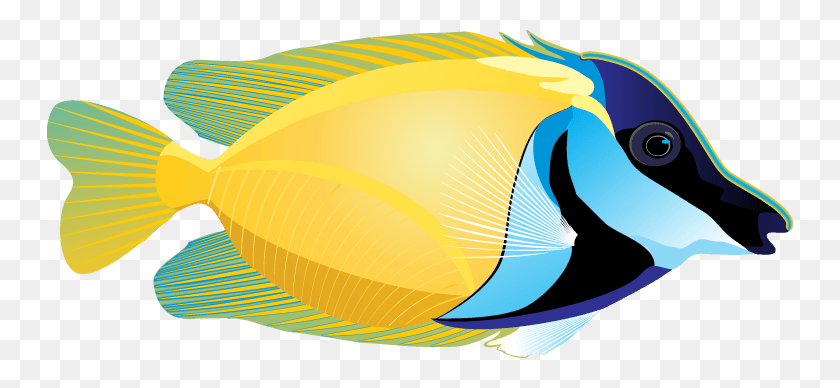 Cliparts Marigold Fish - Marigold Clipart
