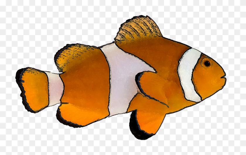 Clownfish Nemo Fish Clipart - Nemo Clipart