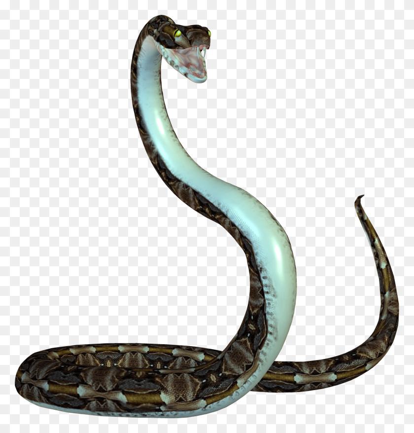 Cobra Png - Cobra PNG