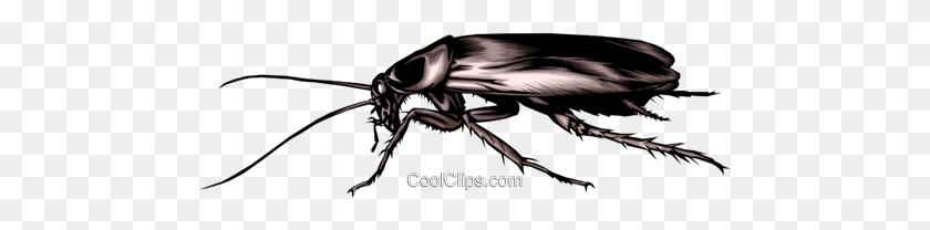 Cockroach Royalty Free Vector Clip Art Illustration - Cockroach Clipart