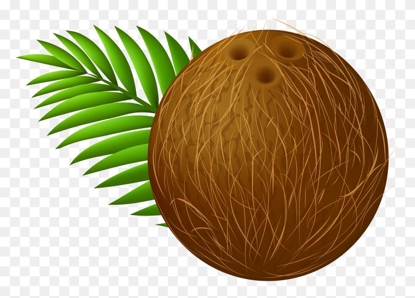 Coconut Transparent Png Clip Art - Paper Clipart Transparent