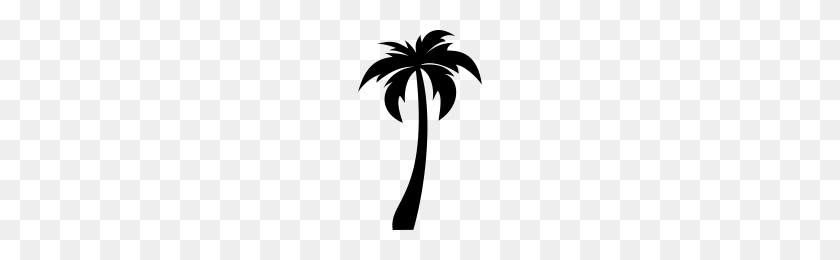Coconut Tree Icons Noun Project - Coconut Tree PNG