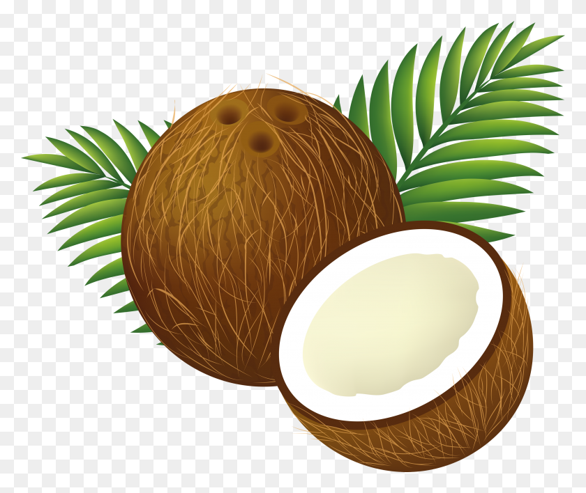 Coconut Tree Png Clipart - Coconut Tree PNG