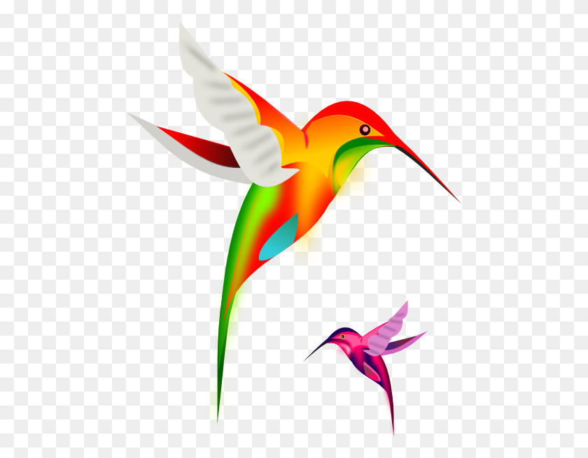 Colibri Birds Clip Art Free Vector - Tropical Bird Clipart