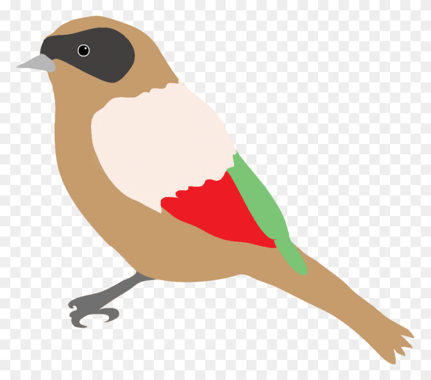 Colorful Drawings Of Birds - Drawing PNG