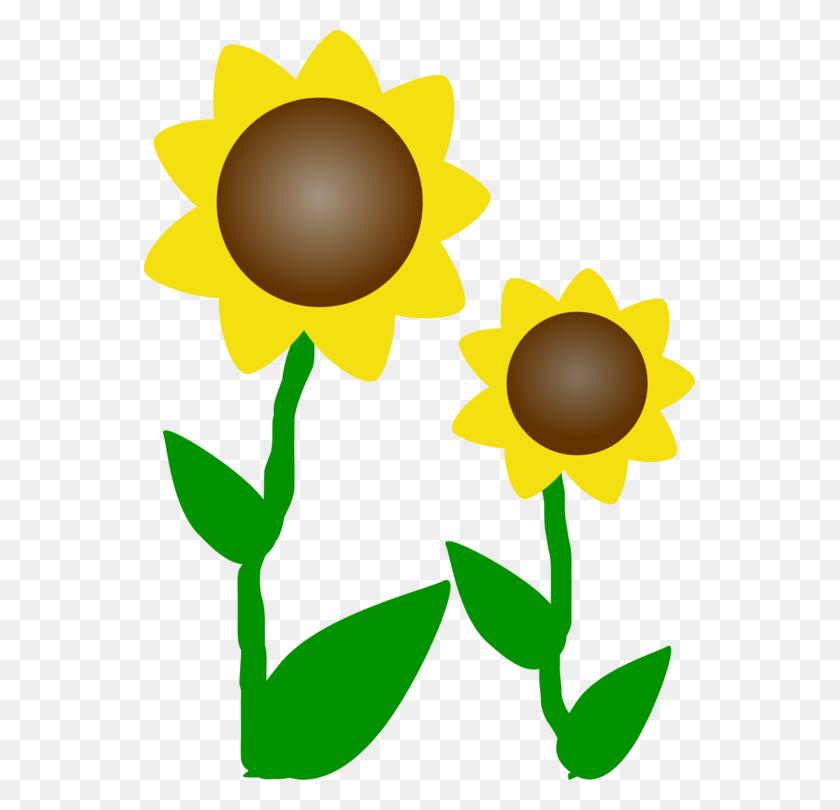 Common Sunflower Download Document Computer - Scottish Thistle Clipart