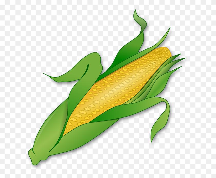 Corn Bc Reads Adult Literacy Fundamental English - English Book Clipart