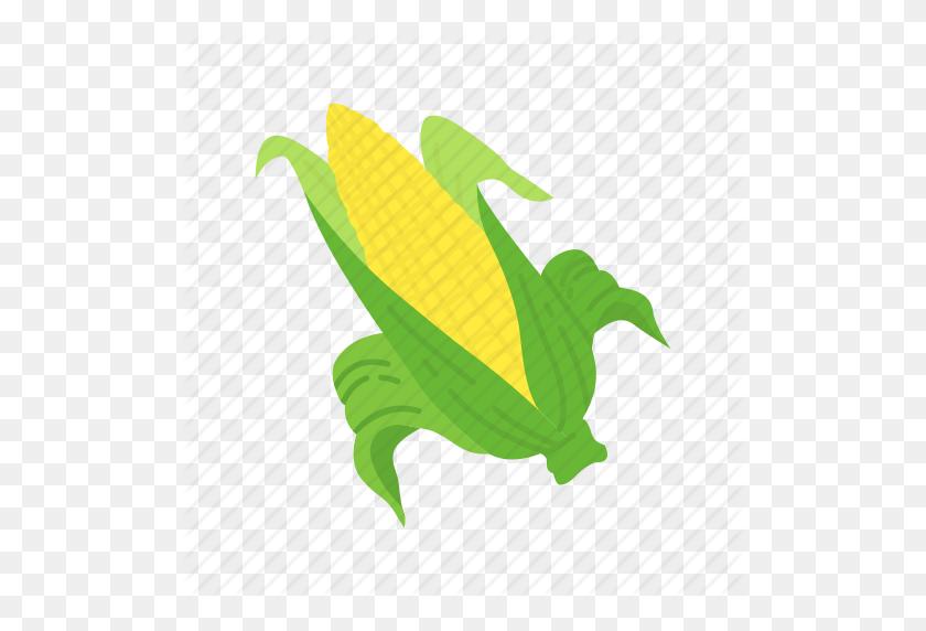 Corn, Corn Cob, Corn Stalk, Wild Corn Icon - Corn Stalk PNG