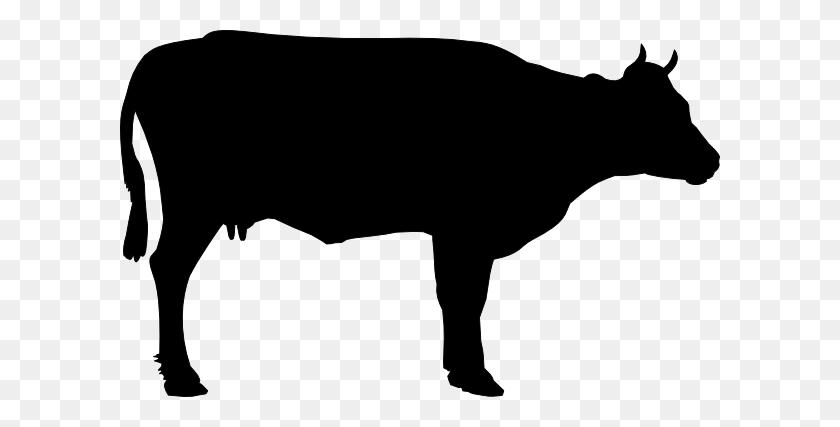 Cow Head Silhouette Clip Art - Longhorn Silhouette Clipart