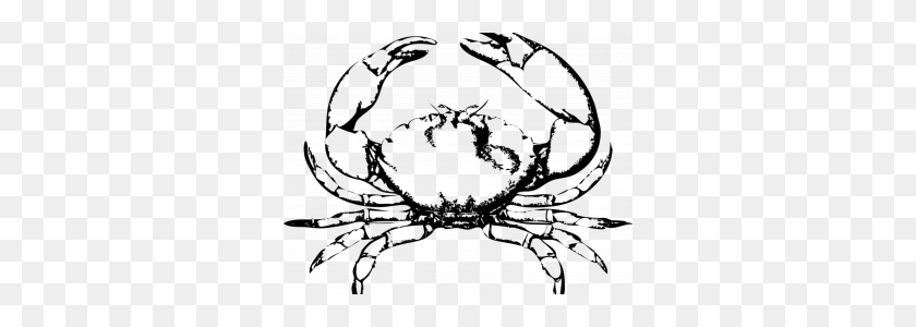 320x240 Crab Images Free Chesapeake Blue Crab Red King Crab Seafood Free - Blue Crab Clip Art