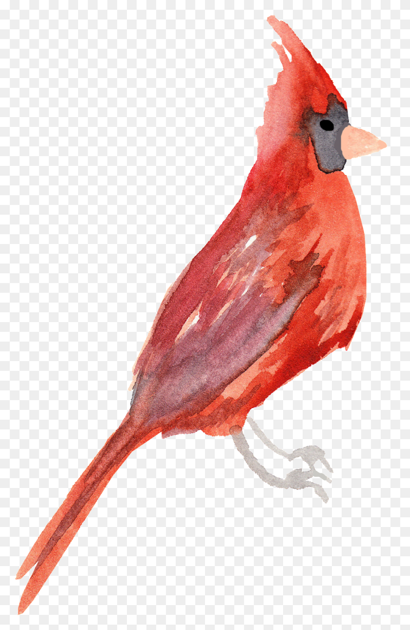 Crystal Red Bird Transparent Decorative Free Png Download Png - Red Paint PNG