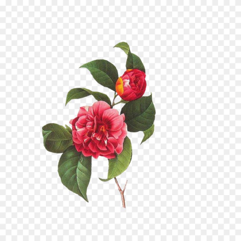Spring Flower Clipart Png Clip Art Images - Pastel Flowers