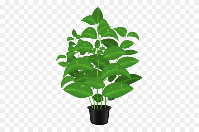 Cute Flower Pots Clipart Plant Pot Clipart Stunning Free Transparent Png Clipart Images Free Download