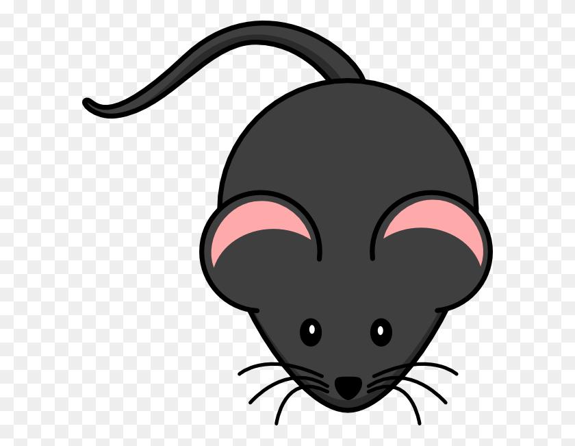 Cute Rat Png Transparent Cute Rat Images - Rat PNG