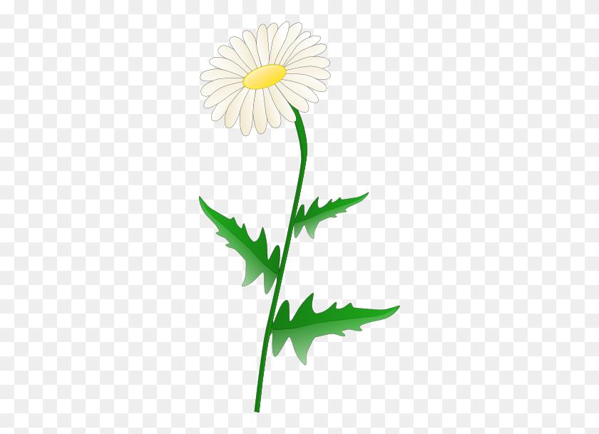 Daisy Clipart, Suggestions For Daisy Clipart, Download Daisy Clipart - Gerber Daisy Clip Art