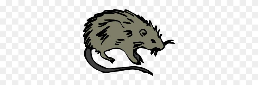 Dead Rat Png Transparent Dead Rat Images - Rat PNG