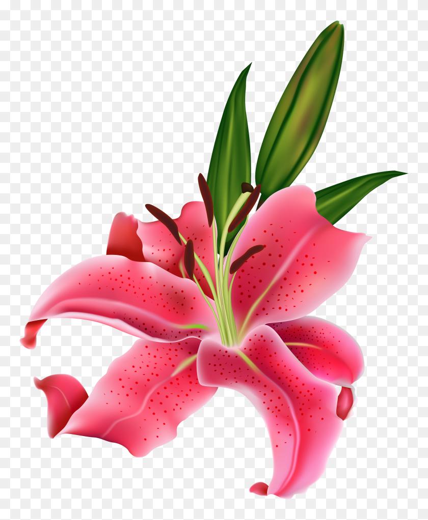 Decoration Clipart Tall Flower - Tall Grass Clipart