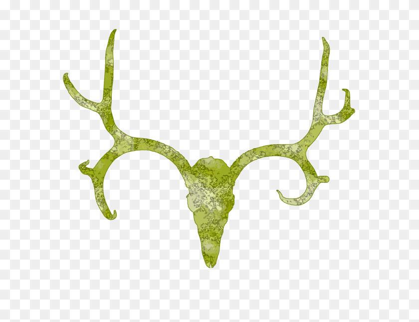 Deer Skull Clip Art Graphics Free Image - Whitetail Deer Clipart