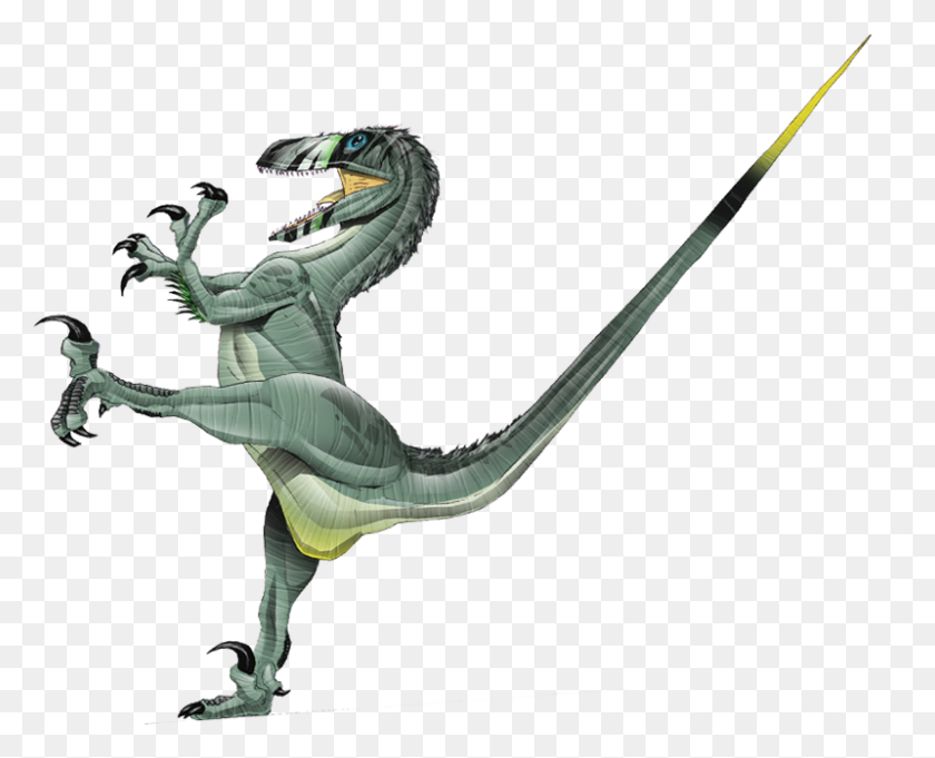 Deinonychus Dinosaur Wiki Fandom Powered - Dinosaur Bones PNG