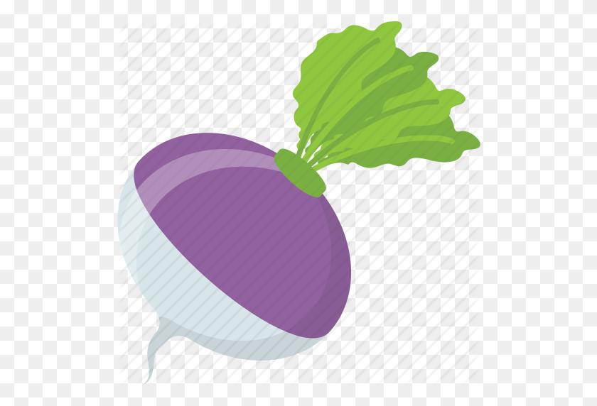 Diet Food, Natural Diet, Root Vegetable, Turnip, Vegetable Icon - Turnip Clipart