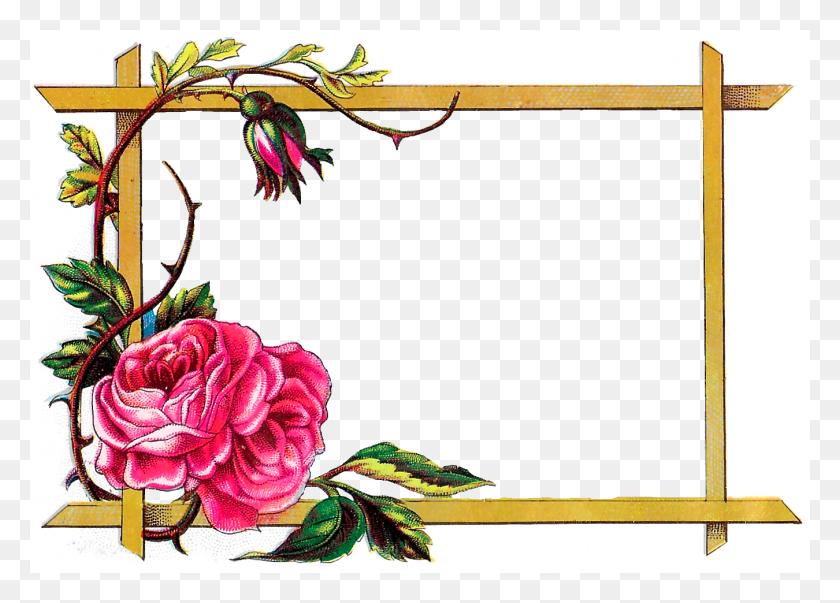 Digital Clipart Craft Rose Border Download Rose Border Png