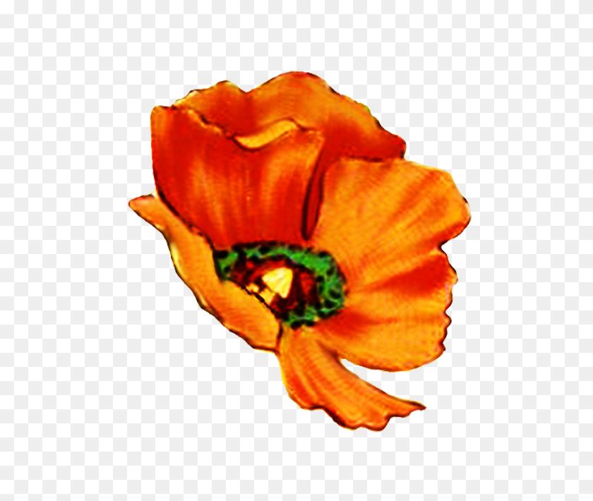 Digital Scrapbooking Flowers - Single Flower Clipart