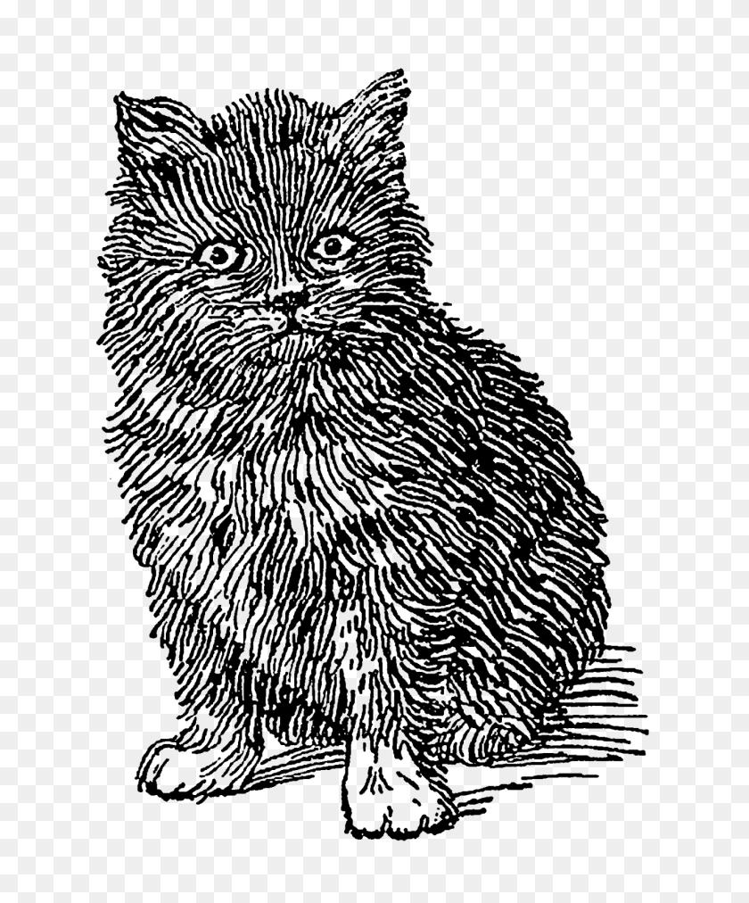 Digital Stamp Design Printable Vintage Kitten Artwork Clip Art - Kittens PNG