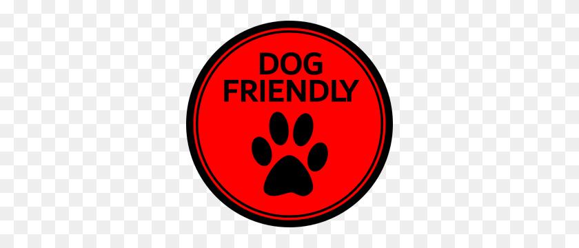 Dog Bowls - Dog Bowl PNG