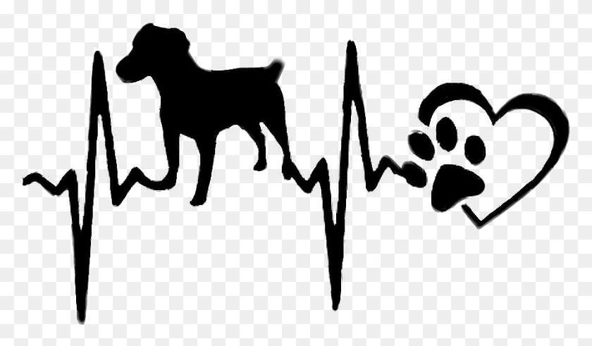 Dog Heartbeat Rhythm - Heartbeat Clipart Black And White