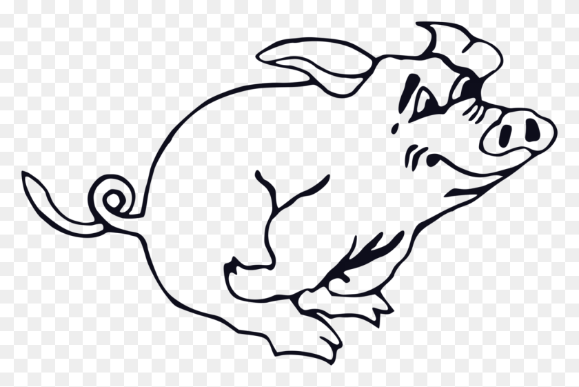 Domestic Pig Line Art Drawing Download - Pig Image Clipart
