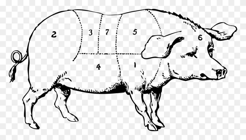 Domestic Pig Pork Chop Ham Pig Roast - Pig Face Clipart Black And White
