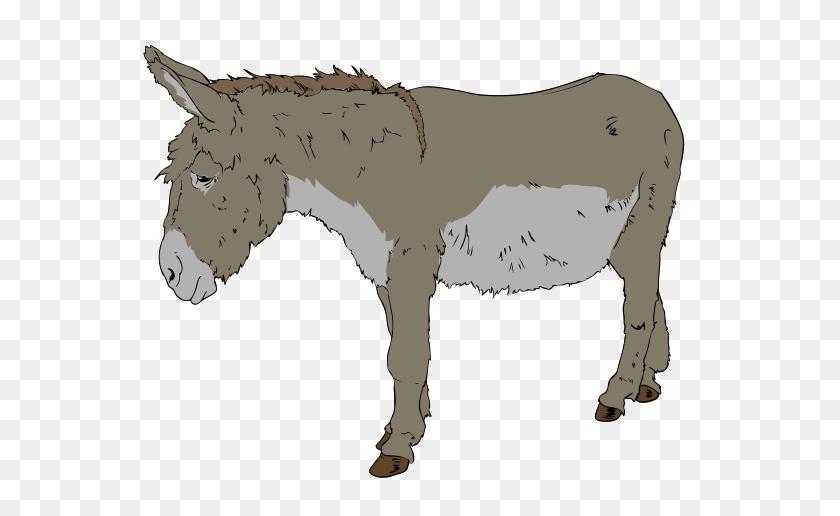 Donkey Clipart - Donkey Clipart