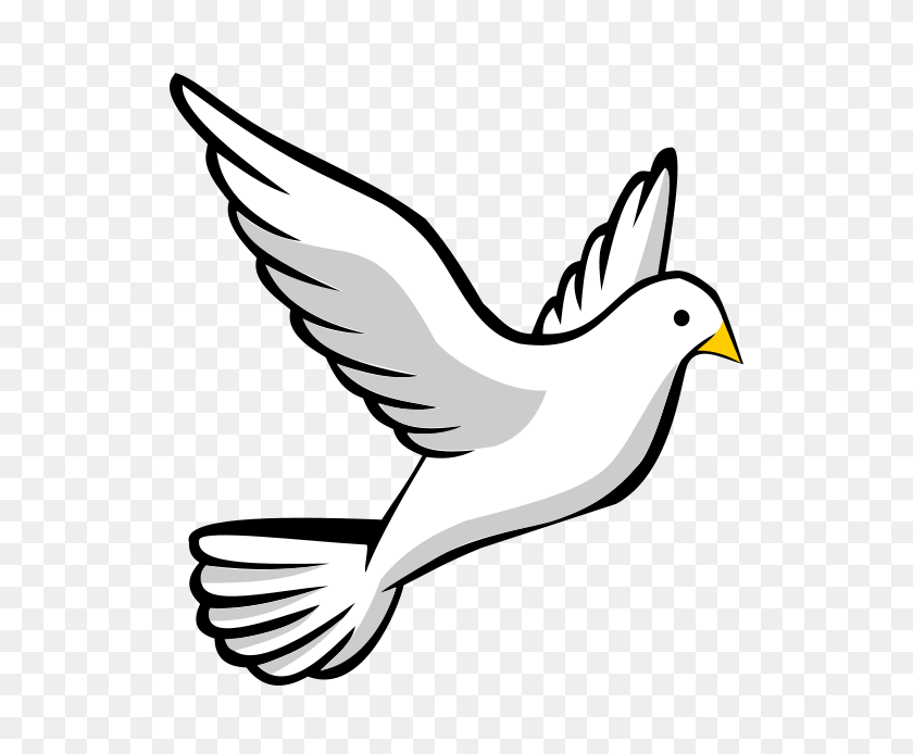 ThoughtsApplied!™ | Dove with Olive Branch Graphic | Dove with olive branch,  Dove and olive, Olive branch