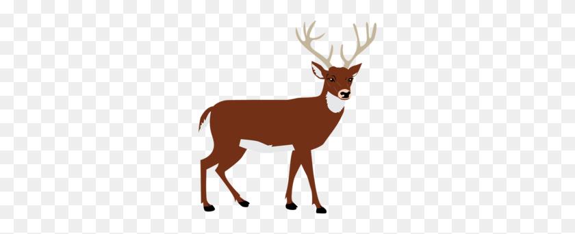 260x282 Download Animal Vector Png Clipart Deer Moose Deer, Reindeer - Moose Silhouette PNG