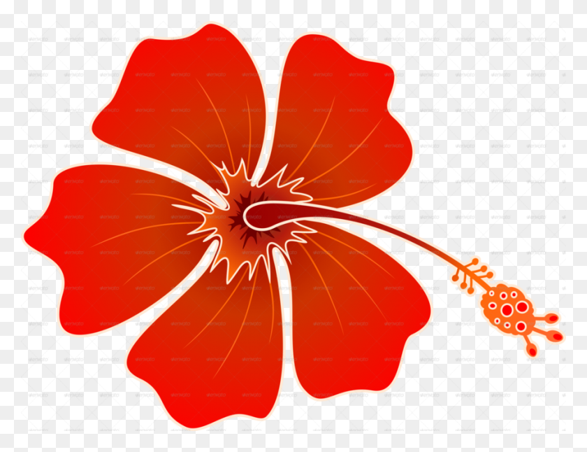 Download Batik Hibiscus Clipart Shoeblackplant Hummingbird Clip - Hummingbird Clipart
