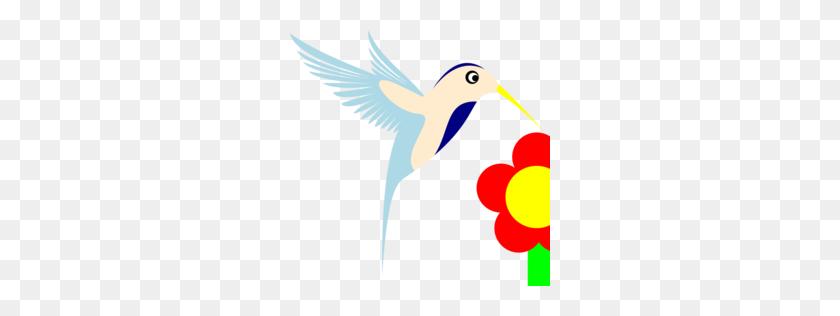 Download Beak Clipart Hummingbird Beak Clip Art Bird, Wing - Ruby Clipart