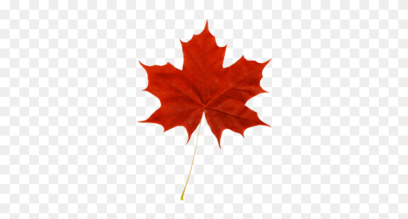 Canada Find And Download Best Transparent Png Clipart Images At Flyclipart Com