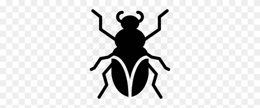 Download Cockroach Clipart Cockroach Beetle Clip Art Black - Beetle Clipart Black And White