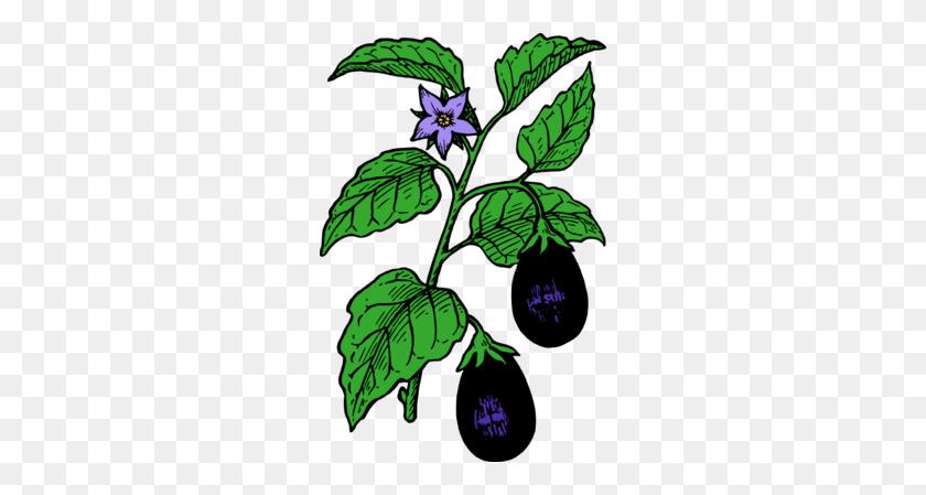 Eggplant Clipart Free Download Best Eggplant Clipart On Clipartmag Com