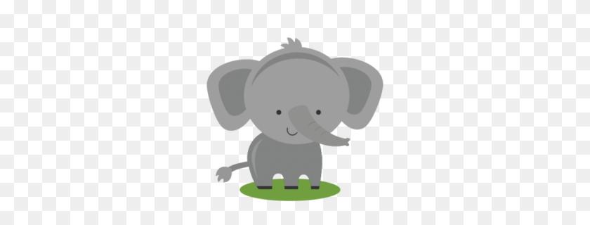 Download Elephant Free Clipart Clip Art Elephant, Cartoon - Elephant Baby Clipart