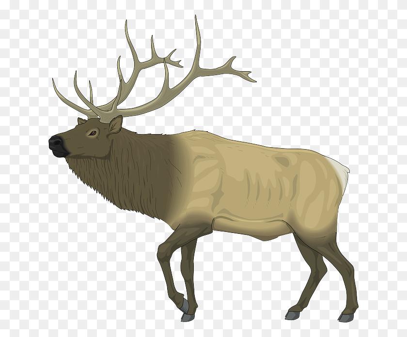 Download Elk Clip Art Free Clipart Elk Clip Art Deer Clipart - Reindeer Food Clipart