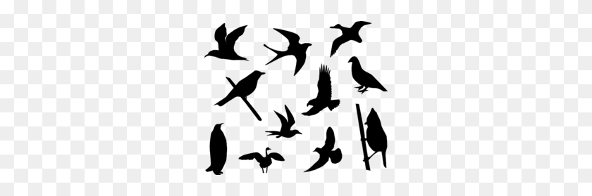 Download Free Bird Silhouette Vector Clipart Bird Clip Art - Bird Clipart Silhouette