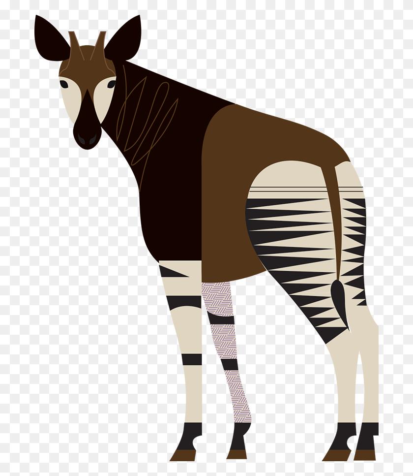 Download Giraffe Clipart Giraffe Okapi Clip Art Giraffe, Okapi - Zebra Clipart PNG