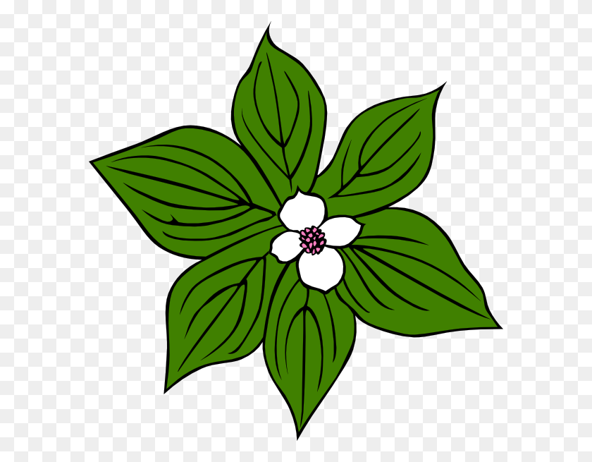 Plant clipart green plant, Plant green plant Transparent FREE for download  on WebStockReview 2020