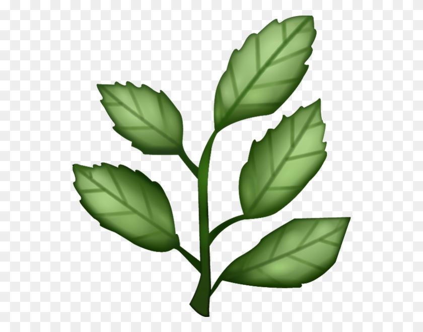 554x600 Download Herb Emoji Image In Png Emoji Island - Plant PNG